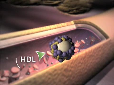 How do statins work?