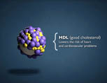Can high fiber foods lower your cholesterol?